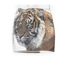 Panthera Tigris Mini Skirt