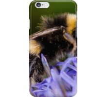Bumble bee on blue flower iPhone Case/Skin