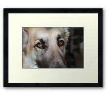 I watch out for you... Framed Print