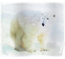 Polar bear in watercolor Poster