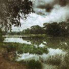 Llano River by Susan Zohn
