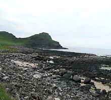 Giant's Causeway- Northern Ireland by Angela Nordheim