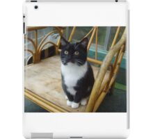 Socks the kitten II iPad Case/Skin