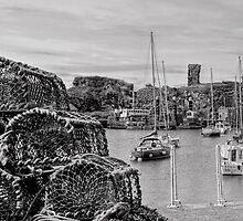 Dunbar - East Lothian, Scotland by Jeremy Lavender Photography