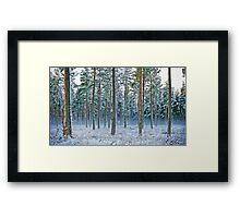 Snow woods Framed Print