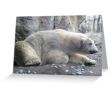 Eric the polar bear Greeting Card