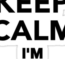 Keep calm I'm a Pilot Sticker
