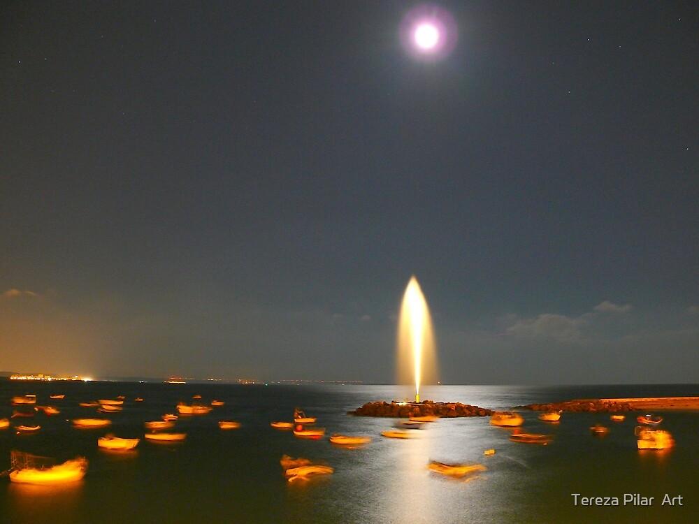 Moonlight Fountain by terezadelpilar~ art & architecture