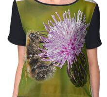 Bumble Bee on Thistle Head Chiffon Top