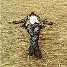 Crop Circle Scare Crow by Monica M. Winkler