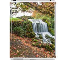 Littlebredy waterfall iPad Case/Skin