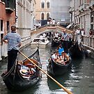 Venice: rush hour in the canal by bertipictures