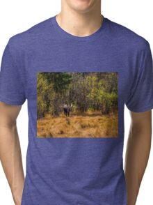 Bullwinkle Tri-blend T-Shirt