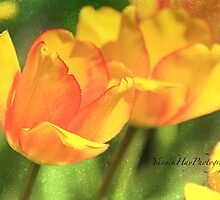 Pair of Tulips by Yannik Hay