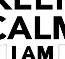 Keep calm I am a Teacher Sticker