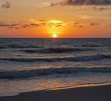 Beautiful Gulf Sunset by designingjudy