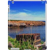 FORGOTTEN TREASURES iPad Case/Skin