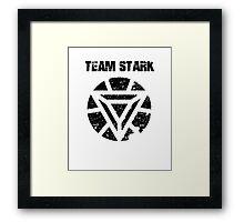 Team Stark  Framed Print