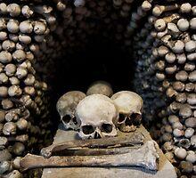 Skulls and bones by JBlaminsky
