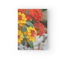 Macro Of Shrub Verbenas or Lantanas (Lantana Camara)  Hardcover Journal