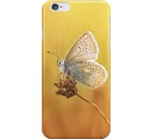 Catching a little sunshine... iPhone Case/Skin
