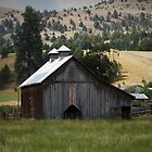 A Peaceful Valley Farm - Wheeler County, OR by Rebel Kreklow