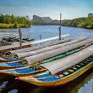 Moored Longboats by Adrian Evans