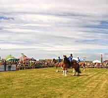 A Perfect Day for Buckham Fair..... Dorset UK by lynn carter