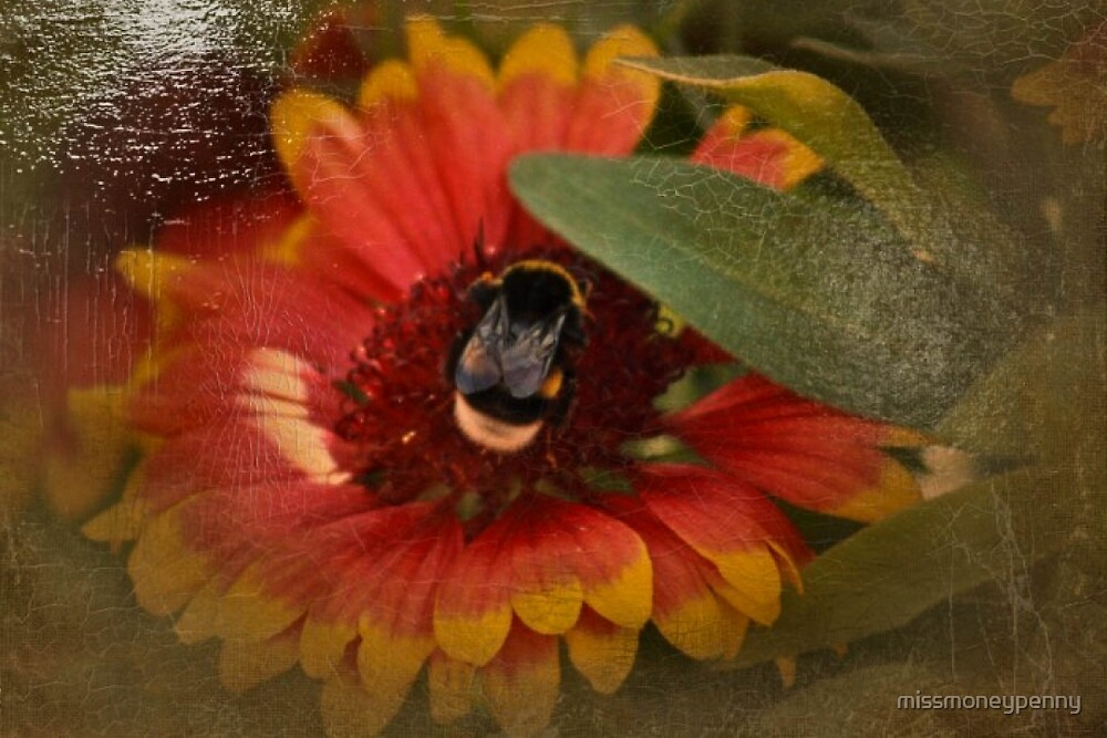 Busy Bumble Bee by missmoneypenny