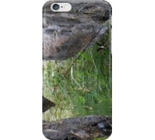 Granite and Reflected Grass iPhone Case/Skin
