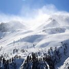 Flying Snow by Omar Dakhane