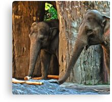 Just Some Cool Elephants Canvas Print