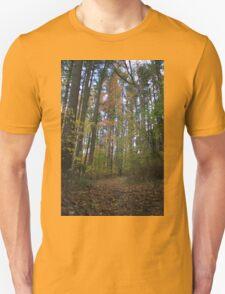 Fall Foliage Trail Unisex T-Shirt