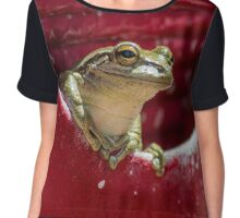 Floridian Frog In Vase  Chiffon Top