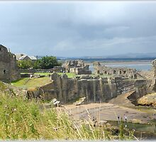 St Andrews Castle! by MY Scotland