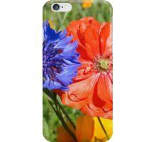 United Colours iPhone Case/Skin