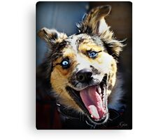 """LOL, I Just Love A Good Joke"" ! Canvas Print"