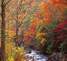 LITTLE RIVER,AUTUMN by Chuck Wickham