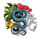 Antique Snake & Fruit Collage  by Lucie Irvine