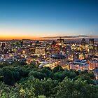 The City Rises by Michael Vesia