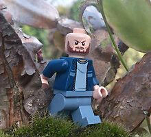 the Adventures of Lego Me- a Walk in the Woods by inesbot