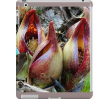 Skunk Cabbage - Spathe With Spadix  iPad Case/Skin