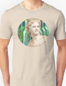 arizona aesthetic Unisex T-Shirt