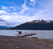On shore - Patagonia Argentina by imagerially
