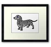 ZEBRA SAUSAGE DOG Framed Print