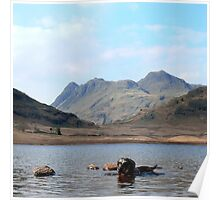 Langdale Merry Poster