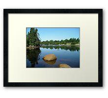 The Tranquil Pond Framed Print
