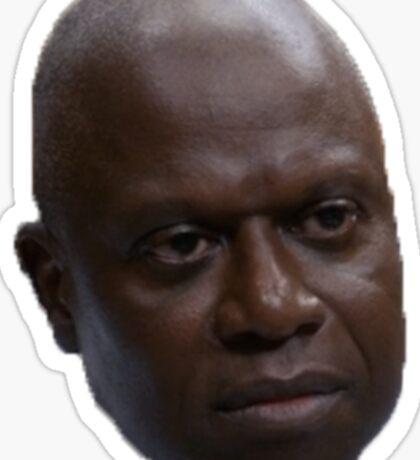 Captain Holt Head sticker  Sticker