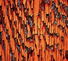 Peeling Paint abstract by Laurie Minor