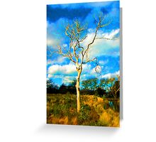 One Bare Tree in the Evening Light Greeting Card